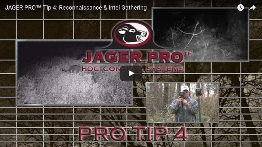 Pro Tip 4: Reconnaissance and Intel Gathering