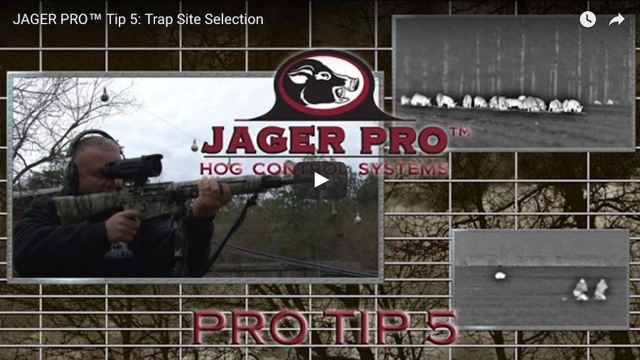 Pro Tip 5: Trap Site Selection