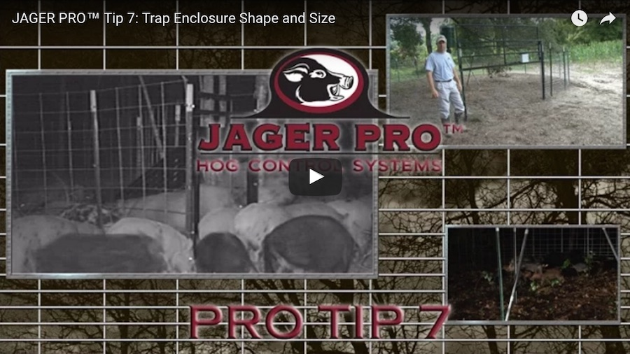 Pro Tip 7: Trap Enclosure Shape and Size