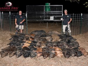 MINE Trapping Gate with 37 eradicated hogs