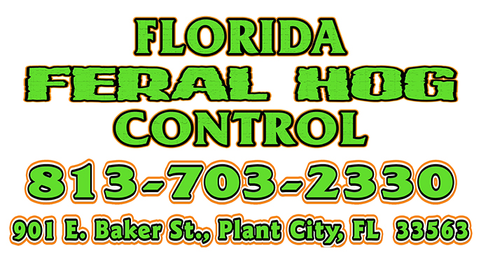 Florida Feral Hog Control