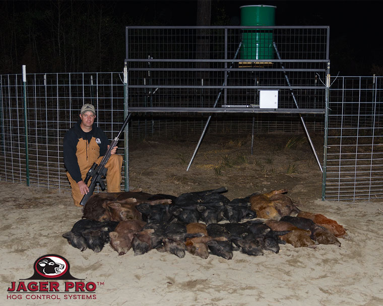 17 Hogs in One MINE Trap