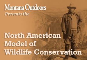 North American Wildlife Conservation Model