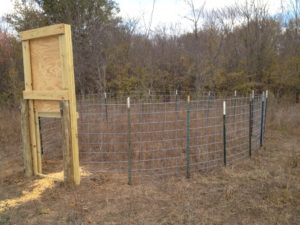 Hog Trapping – Trap & Gate Selection