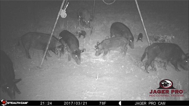 Hog Control: JAGER PRO<sup>®</sup> TV (Episode 02) – Mission, Harvest Efficiency Report & Return on Labor
